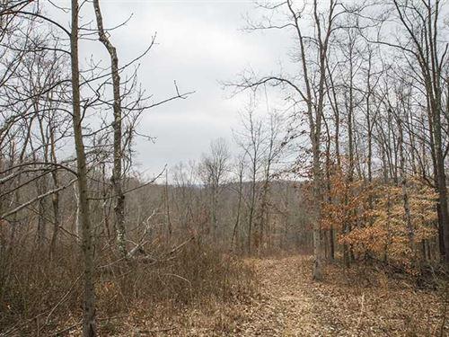 Tabor Ridge Rd, 45 Acres, Washin : Stockport : Washington County : Ohio