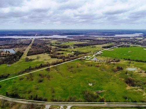 Almost 300 East Texas Acres Yantis : Yantis : Wood County : Texas