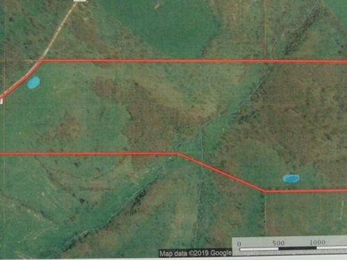 Land For Sale In Southern Missouri : Mountain Grove : Wright County : Missouri