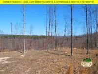 Wonderful Views, Clearing, Creek : Norwood : Douglas County : Missouri