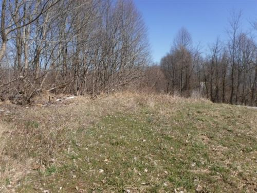 65 Acs, Mtn Views, Creek, Home Site : Liberty : Casey County : Kentucky