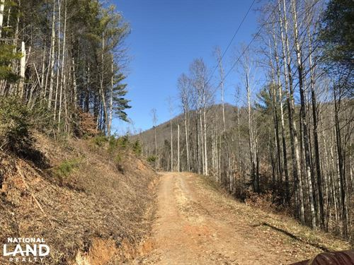 Colletsville Forest Creek Lot 65 : Collettsville : Caldwell County : North Carolina