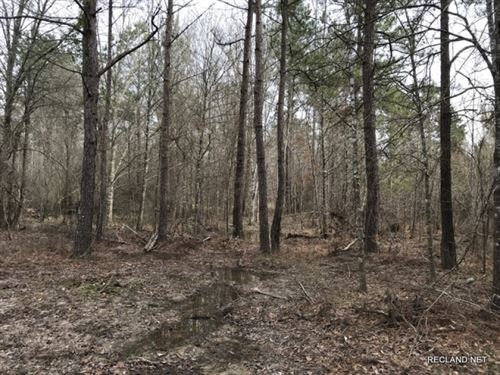 160 Ac, Bottomland Hunting Tract : Vixen : Caldwell Parish : Louisiana