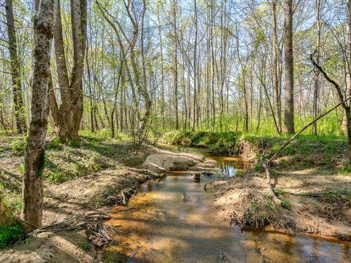 Madison Farms Lot A : Madison : Georgia