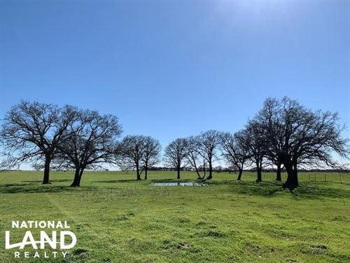 20 Acres Near Mabank, Scenic Farm : Mabank : Kaufman County : Texas