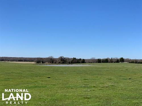 20 Acres North of Mabank, Pasture : Mabank : Kaufman County : Texas