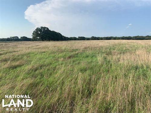 20 Acres North of Mabank, Scenic PA : Mabank : Kaufman County : Texas