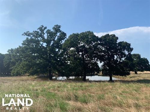 66 Acres With Pond, Building Sites : Mabank : Kaufman County : Texas