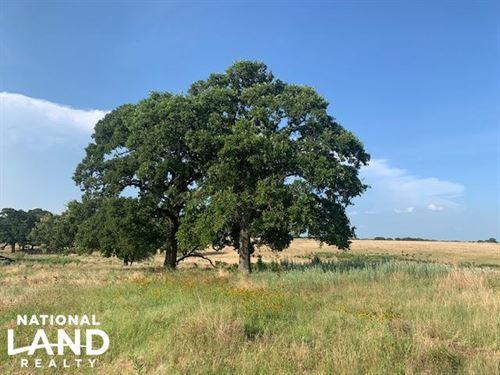 40 Acres North of Mabank, Great Bui : Mabank : Kaufman County : Texas