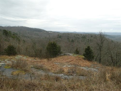 Arkansas Mountain Acreage : Melbourne : Izard County : Arkansas
