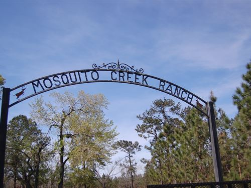 Mosquito Creek Ranch : Mount Pleasant : Gadsden County : Florida