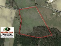 26 Acres of Residential Farm And : Lumberton : Robeson County : North Carolina