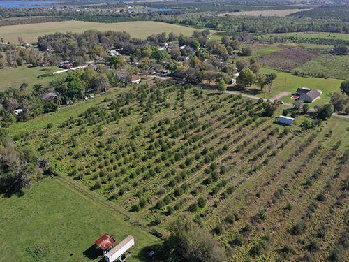 Reynolds Road Home Sites : Bartow : Polk County : Florida