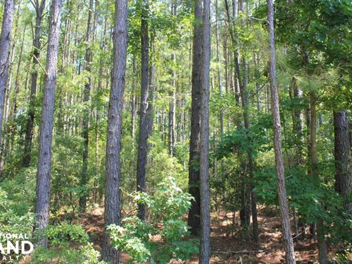 Moncks Corner Area Large Acreage Ho : Moncks Corner : Berkeley County : South Carolina