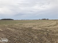 160 Acres Row Crop Farmland And : Des Arc : Prairie County : Arkansas