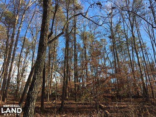 Travelers Rest Hardwoods And Creeks : Greenville : South Carolina