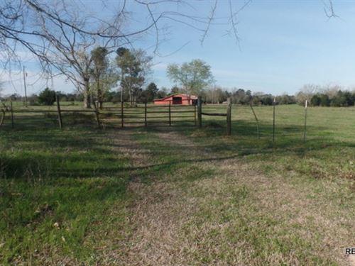 35.3 Ac, Ranch Near Kirbyville : Kirbyville : Jasper County : Texas