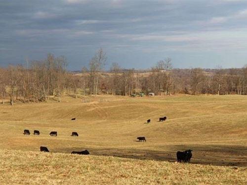 204 Acre Cattle/Crop Farm : Scottsville : Allen County : Kentucky