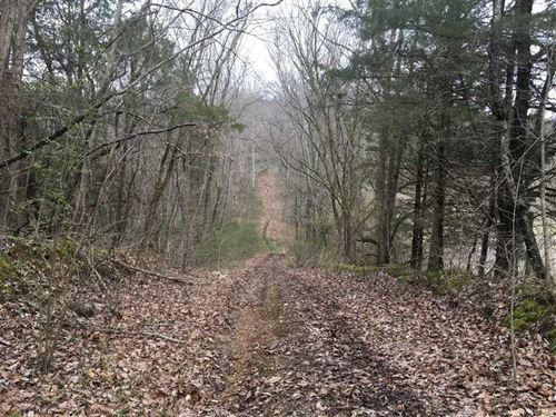 237 Acres, Prime Location : Horse Cave : Hart County : Kentucky