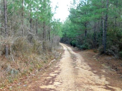 435 Acres In Lawrence County In Son : Sontag : Lawrence County : Mississippi