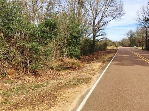 Small Hunting Acreage For Sale Glos : Gloster : Amite County : Mississippi
