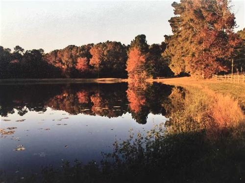 Parker's Pond A Beautiful Oasis : Mabelvale : Saline County : Arkansas