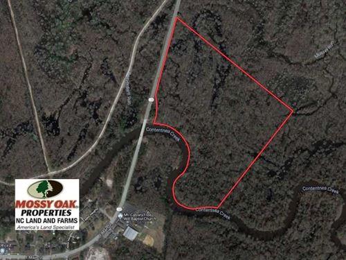 43.66 Acres of Creekfront Hunting : Hookerton : Greene County : North Carolina