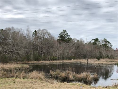Minter Tweed Retreat : Madison : Morgan County : Georgia