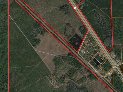 395 Acres Recreational Property : Waycross : Ware County : Georgia