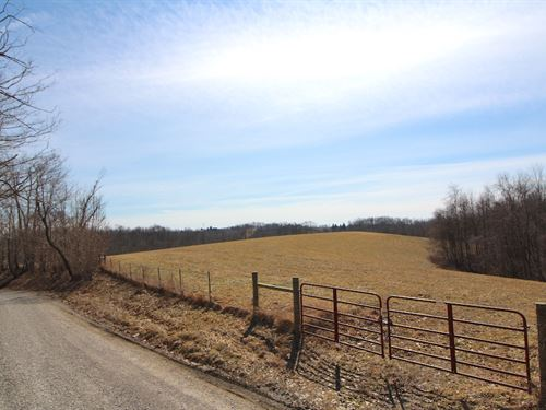 Schroder Rd, 26 Acres : Jacobsburg : Belmont County : Ohio