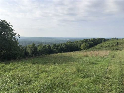 310 Acre Cattle Farm in Stone : Leslie : Stone County : Arkansas