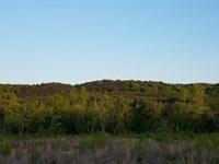 Ligon Creek Mtn Retreat, 160+ Ac : Delta Al : Clay County : Alabama