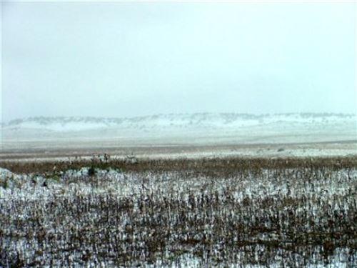 40 Acres With Wonderful Views : Walsenburg : Huerfano County : Colorado