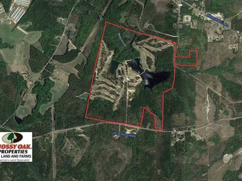 308.81 Acre Golf Course For Sale : Rockingham : Richmond County : North Carolina