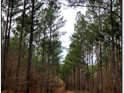 83.05 Acres In Lafayette County : Water Valley : Lafayette County : Mississippi