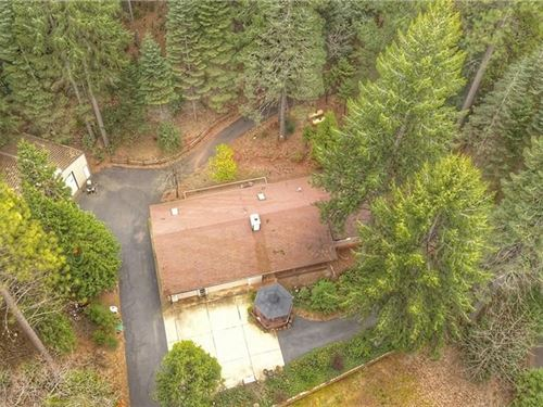 Hunting Property Sierra Foothills : Forbestown : Butte County : California