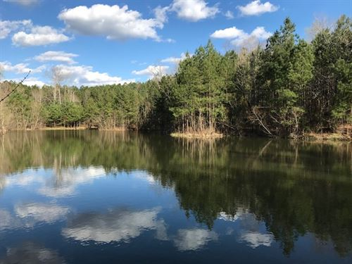 75 Acres, Fishing, Hunting : Pinson : Jefferson County : Alabama