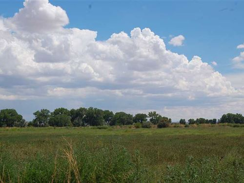 Melecio 17 Farm : Veguita : Socorro County : New Mexico