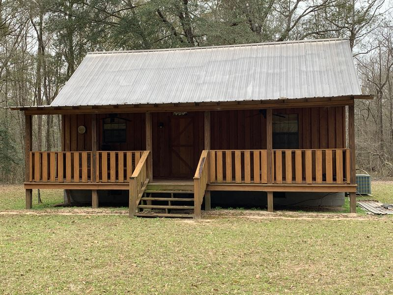 Prime Hunting On Creek With Cabin : Ranch for Sale : Americus : Sumter  County : Georgia
