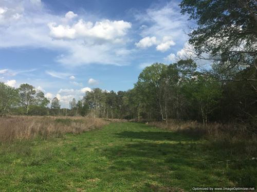 Hardwoods, Creeks, House Sites : Ruth : Lawrence County : Mississippi