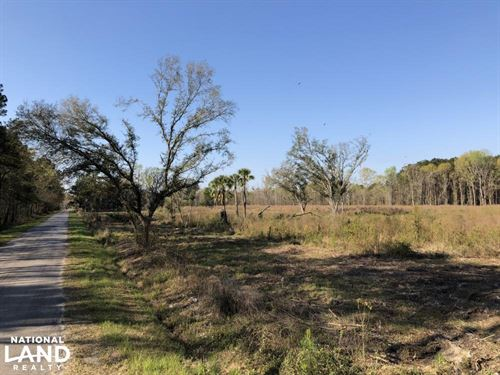 Dale 10 Acres Open Multi-Use Reside : Seabrook : Beaufort County : South Carolina