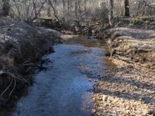 Land For Sale in Pinnacle NC : Pinnacle : Stokes County : North Carolina