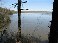 Riverfront Property With Beautiful : Camden : Wilcox County : Alabama