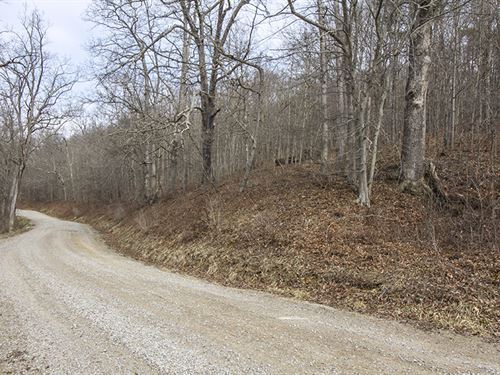 Tr 224, 15 Acres : Shawnee : Perry County : Ohio