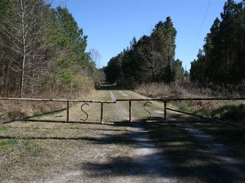 Sparks Family Farm : Columbia : Tyrrell County : North Carolina