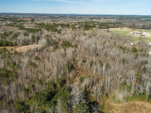 Private, Wooded Acreage In West Ga : Temple : Haralson County : Georgia