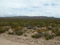 80 Acs, Hunting Land $525/Mo, $0 Dn : Sierra Blanca : Hudspeth County : Texas