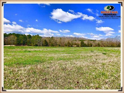 Beautiful 65.19 Acres on Dodd : Shirley : Van Buren County : Arkansas