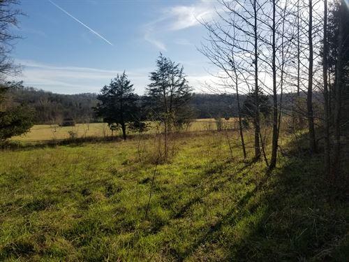 Wayne County Clifton TN Hunting : Clifton : Wayne County : Tennessee