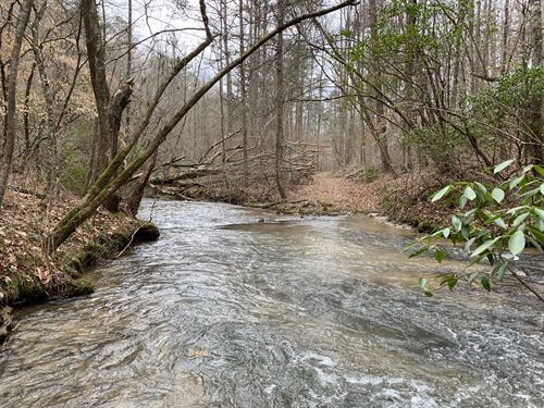 210 Acres Near Fort Mtn State Park : Ellijay : Gilmer County : Georgia